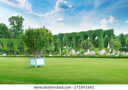 lawn and hedge in a summer park - stock photo