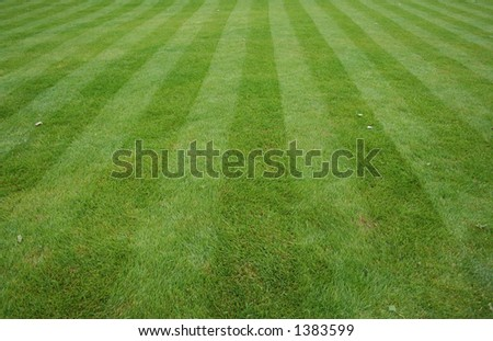 Lawn cut with stripes background