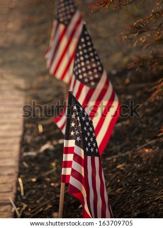 Lawn flags with morning sunshine in downtown Linglestown, Pennsylvania. - stock photo