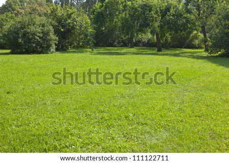 Lawn in city park - stock photo