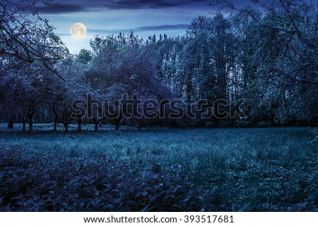 lawn in the shade of fruit trees of green fruit garden in spring at night in full moon light - stock photo