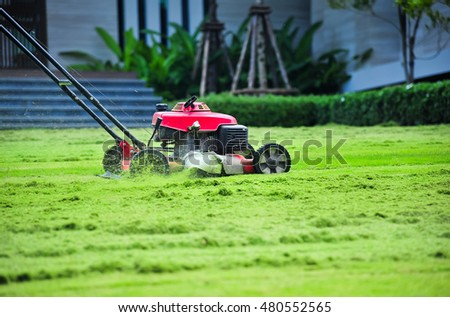 Lawn mower cutting green grass in backyard,Garden service,grass cutter cutting green lawns.