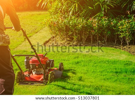 Lawn mower cutting green grass in backyard,Garden service,grass cutter cutting green lawns.Gardener mowing with lawnmower