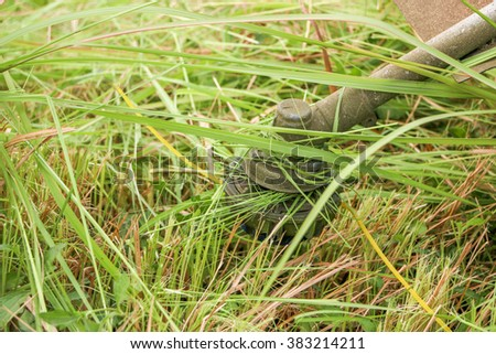 lawn mower on grass - stock photo