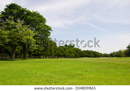 Lawn on a golf field  in Bangkok, Thailand - stock photo