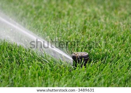 Lawn sprinkler head - plastic - stock photo