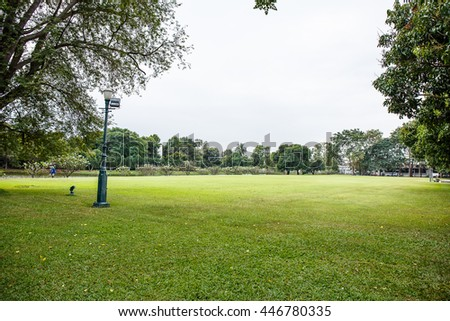 Lawn with blue sky - stock photo