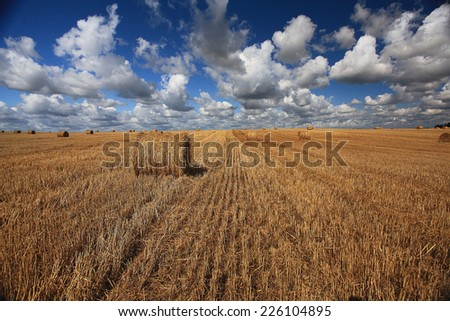 lay hay on field clouds sun - stock photo
