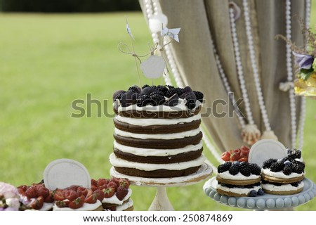 Layer cakes with protein cream and fresh blackberry on a cake stand outdoors - stock photo