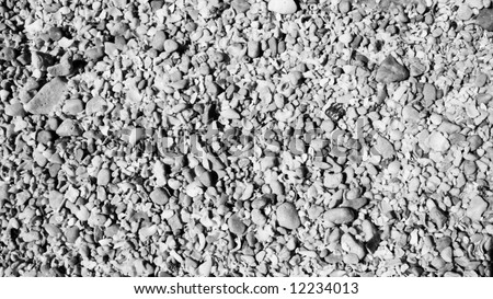 Layer of seashell sand in black and white - stock photo