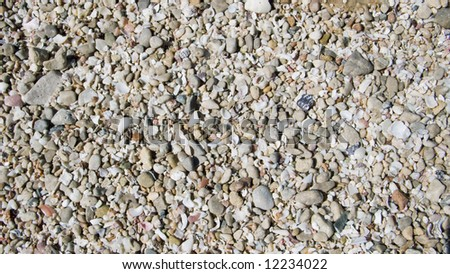 Layer of seashell sand in color - stock photo