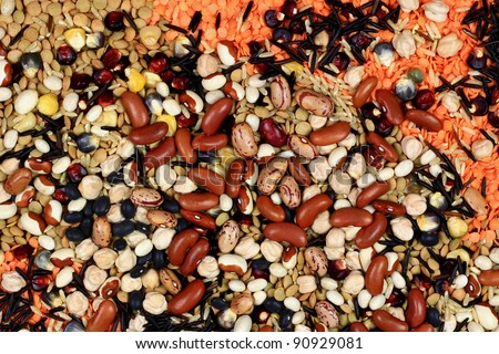 Layer seeds of Chick Peas, Wild and Brown Rice, Red and Green Lentils; Different colored Indian Corn Kernels; Black, Red Kidney, Yellow Eyed, Romano, and White Beans; Background. Can Cook by boiling. - stock photo