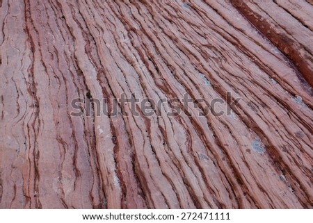 Layers of red sandstone rock detail showing years of erosion in Zion National Park, Utah. Background. - stock photo