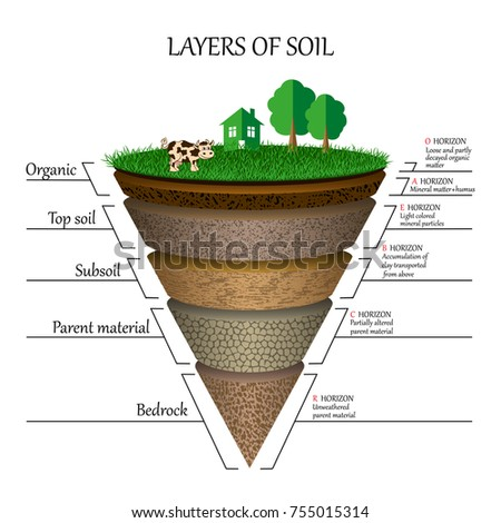 Layers soil education diagram mineral particles stock for Is soil a mineral
