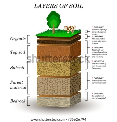 Layers soil education diagram mineral particles stock for What are the four layers of soil