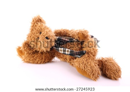 Laying teddy bear