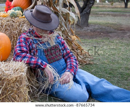 lazy scarecrow - stock photo