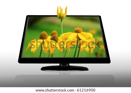 LCD display showing 3D yellow flowers isolated on white - stock photo
