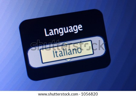 LCD display with the world Language and a selection of Italian.