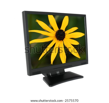 LCD screen with gorgeous flower - stock photo