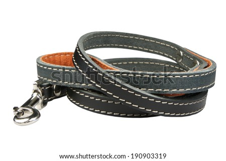 Lead for a dog - stock photo