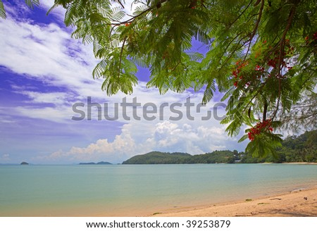 Leaf and sea - stock photo