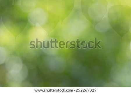 Leaf bokeh background - stock photo