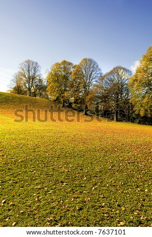 Leaf covered Park on a stunning Bright Autumnal Day in Northumberland England - stock photo