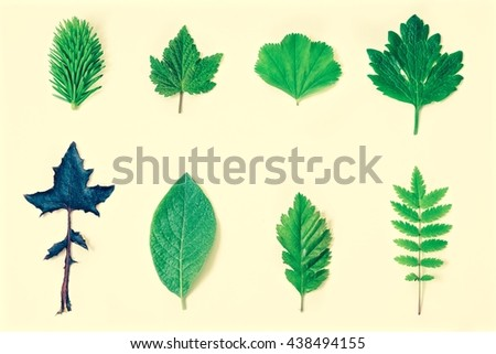 Leaf on vintage background - stock photo