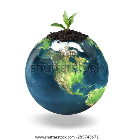 Leaf, Plant, Seed. - stock photo