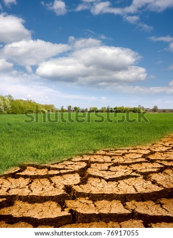 leafless part ground ingressive on green field - stock photo