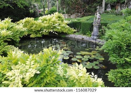Leafy Garden Pond - stock photo