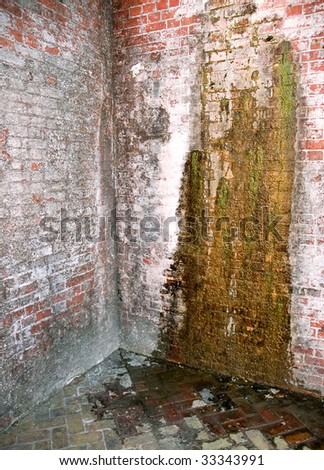 leaking and moss covered brick walls