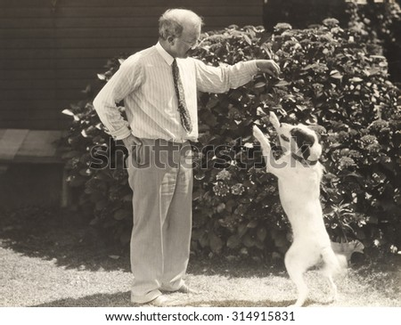 Learning a new dog trick - stock photo