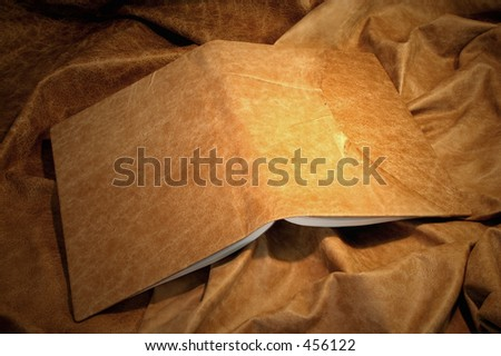 leather book cover - pale - stock photo