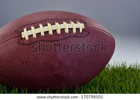Leather football on green grass field.
