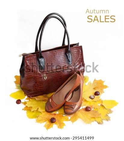 Leather luxury woman handbag and shoes isolated on white background with autumn leaves. Autumn sales concept - stock photo