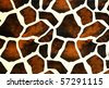 leather Pattern texture - stock photo