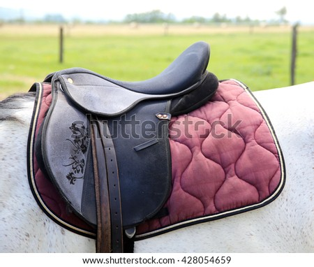 Leather saddle for equestrian sport on a back of a horse  - stock photo