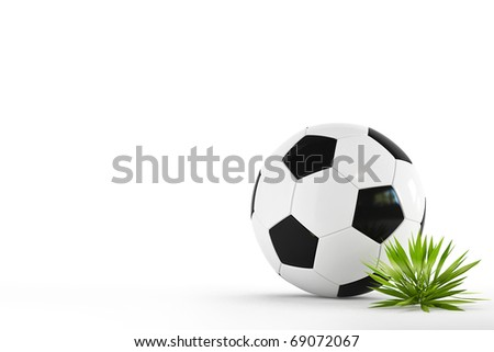 Leather soccer ball isolated on white background with a tuft of grass - stock photo