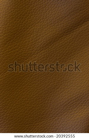 Leather texture with highlights