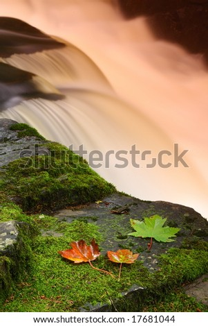 Leaves and foliage sit by a fast flowing warm waterfall - stock photo