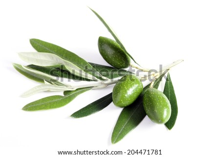 Leaves and green olives
