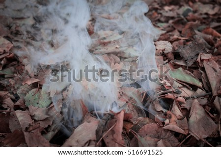 leaves and smoke autumn concept