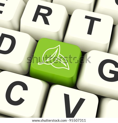 Leaves Icon Green Computer Key For Recycling And Eco Friendly - stock photo