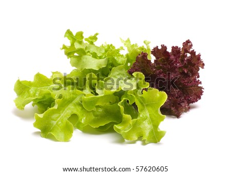 Leaves of red and green lettuce on a white background.