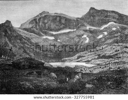 Leefeld wild Alps, canton of Unterwalden, vintage engraved illustration. Magasin Pittoresque 1877.