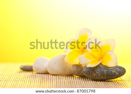 Leelawadee flower and pebbles on bamboo background under warm sunshine - stock photo