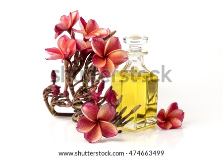 Leelawadee (thai name) frangipani, Plumeria, Fragrance : aesthetic properties , Smell and antioxidants , Uses extracts of frangipani in cleaning products and skin care services.