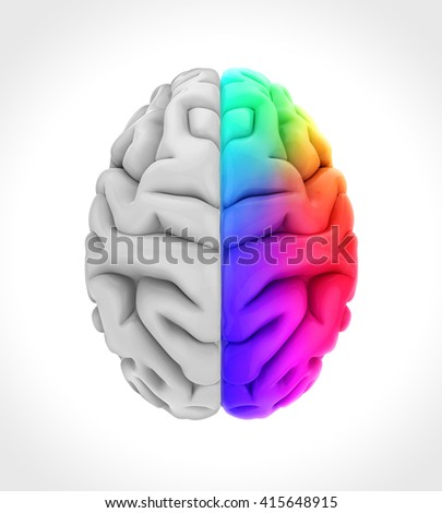 Left and Right Human Brain Illustration. 3D rendering - stock photo